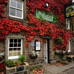 The Royal Oak Inn Nidderdale